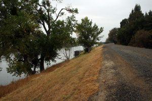 Levee for flood defense