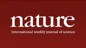 Published Words on Sustainability